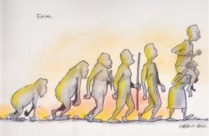Primatların Evrimi