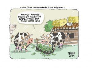Hayvancılık can çekişiyor?